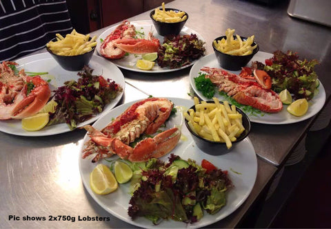 Padstow Shellfish Co Cooked Dressed Lobster