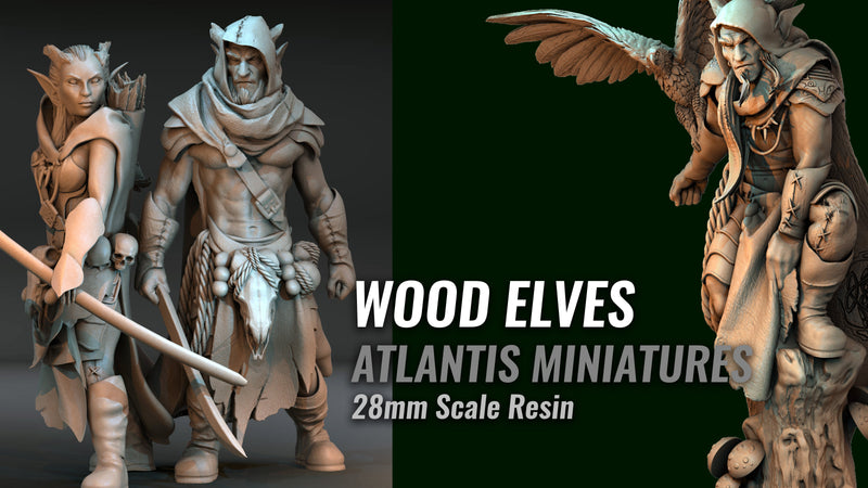 WOOD ELVES ANNOUNCEMENT!