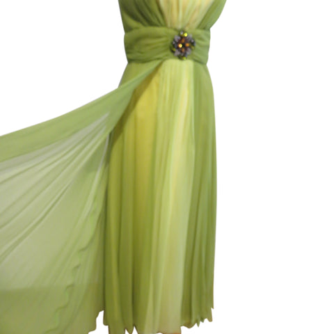Vintage 1960 Evening gown