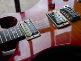 Paul Reed Smith PRS SE Custom