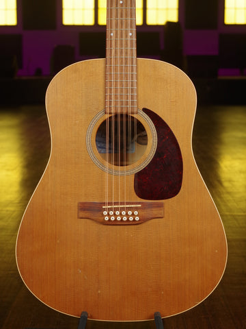 Seagull 12 String