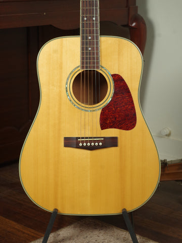 Ibanez Artwood Dreadnought Acoustic