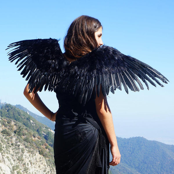 Adult Mockingbird Large Wings Costume - Black Angel Fairy Cosplay Halloween Crow Feather Wing