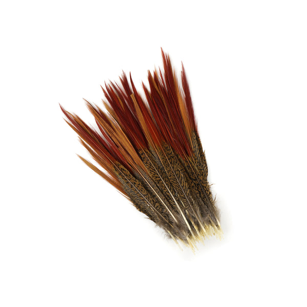 Golden Red Top Pheasant Tails