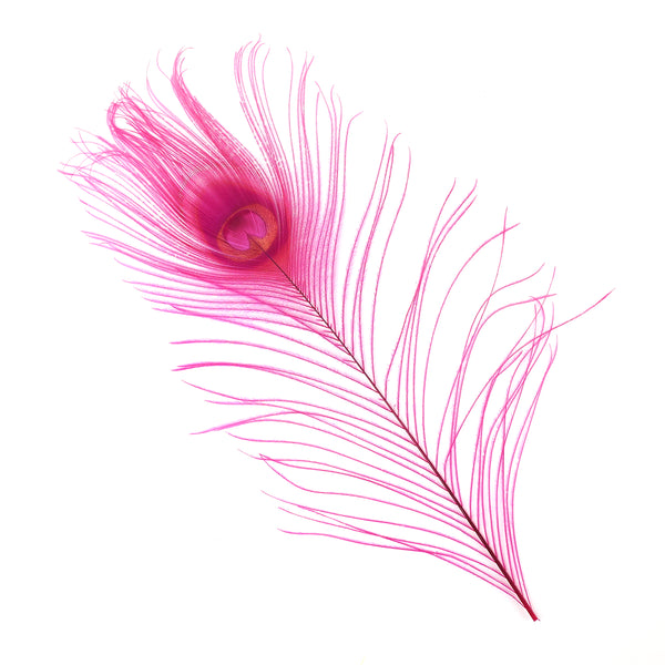 "Zucker™ Bleached Peacock Tail Feathers with Full Eyes - 8 - 15"" -100 pcs - Shocking Pink"