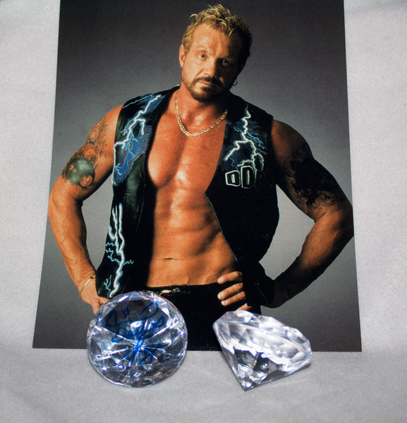 Acrylic diamond autographed by Diamond Dallas Page