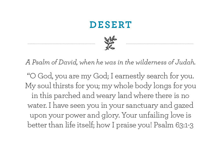 "A Psalm of David, when he was in the wilderness of Judah. ""O God, you are my God; I earnestly search for you. My soul thirsts for you; my whole body longs for you in this parched and weary land where there is no water. I have seen you in your sanctuary and gazed upon your power and glory. Your unfailing love is better than life itself; how I praise you! Psalm 63:1-3"