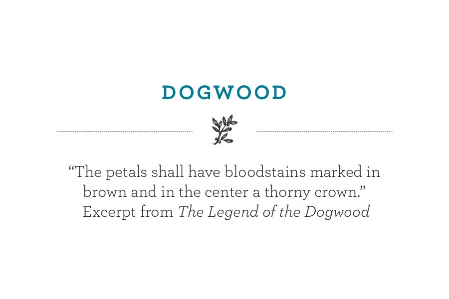 """The petals shall have bloodstains marked in brown and in the center a thorny crown.""   Excerpt from The Legend of the Dogwood"