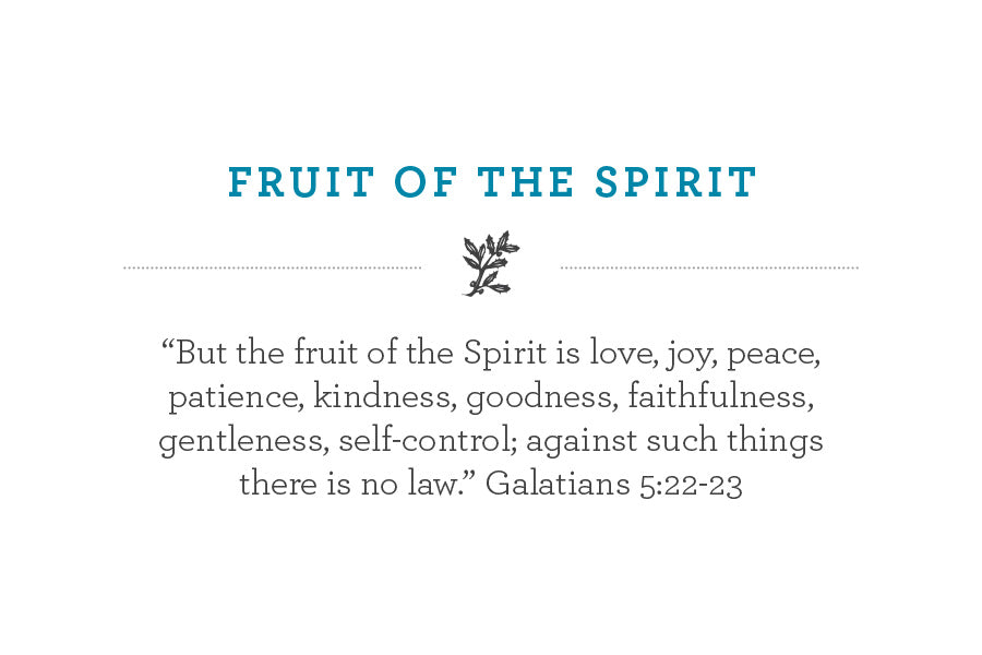 """But the fruit of the Spirit is love, joy, peace, patience, kindness, goodness, faithfulness, gentleness, self-control; against such things there is no law."" Galatians 5:22-23"