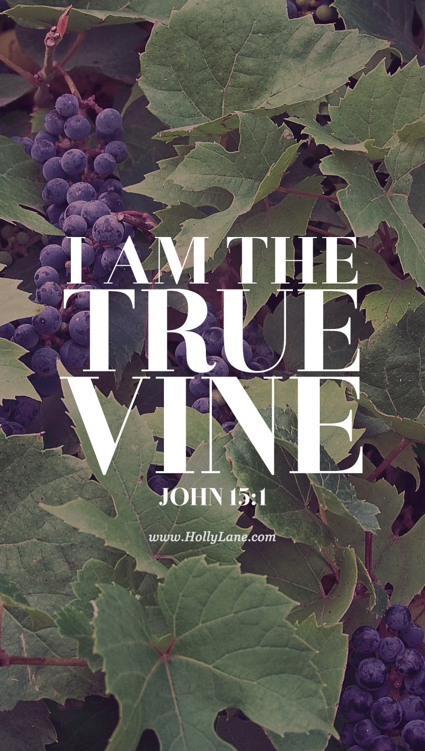"""I am the true vine, and my Father is the gardener. He cuts off every branch in me that bears no fruit, while every branch that does bear fruit he prunes so that it will be even more fruitful."" John 15:1-2 Free mobile wallpaper by hollylane.com"