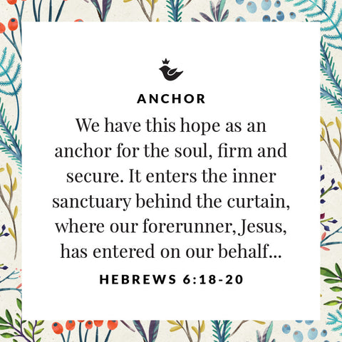 We have this hope as an anchor for the soul, firm and secure. It enters the inner sanctuary behind the curtain, where our forerunner, Jesus, has entered on our behalf... Hebrews 6:18-20