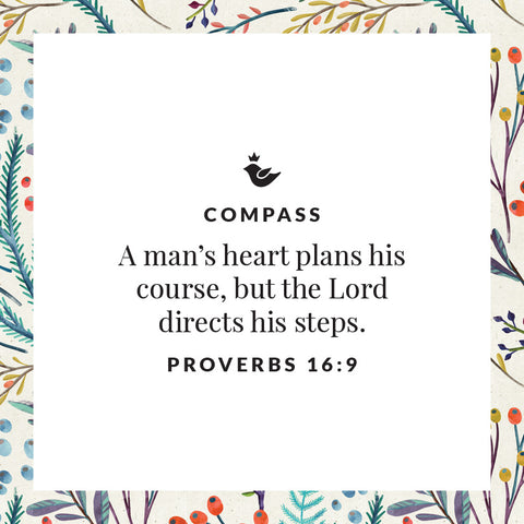 A man's heart plans his course, but the Lord directs his steps. Proverbs 16:9