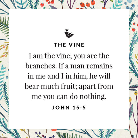 I am the vine; you are the branches. If a man remains in me and I in him, he will bear much fruit; apart from me you can do nothing. John 15:5