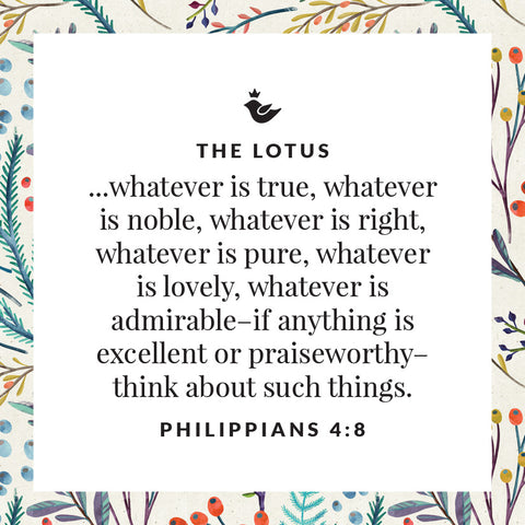 ...whatever is true, whatever is noble, whatever is right, whatever is pure, whatever is lovely, whatever is admirable–if anything is excellent or praiseworthy–think about such things.