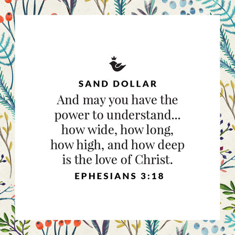 And may you have the power to understand... how wide, how long,  how high, and how deep  is the love of Christ.  Ephesians 3:18