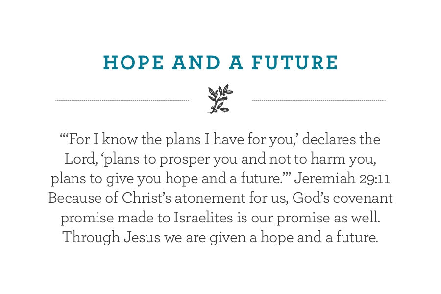 """'For I know the plans I have for you,' declares the Lord, 'plans to prosper you and not to harm you, plans to give you hope and a future.'"" Jeremiah 29:11 Because of Christ's atonement for us, God's covenant promise made to Israelites is our promise as well. Through Jesus we are given a hope and a future."