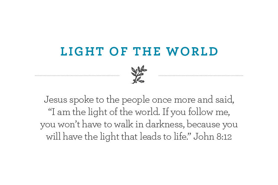 """Jesus spoke to the people once more and said,  """"I am the light of the world. If you follow me,  you won't have to walk in darkness, because you  will have the light that leads to life."""" John 8:12"""