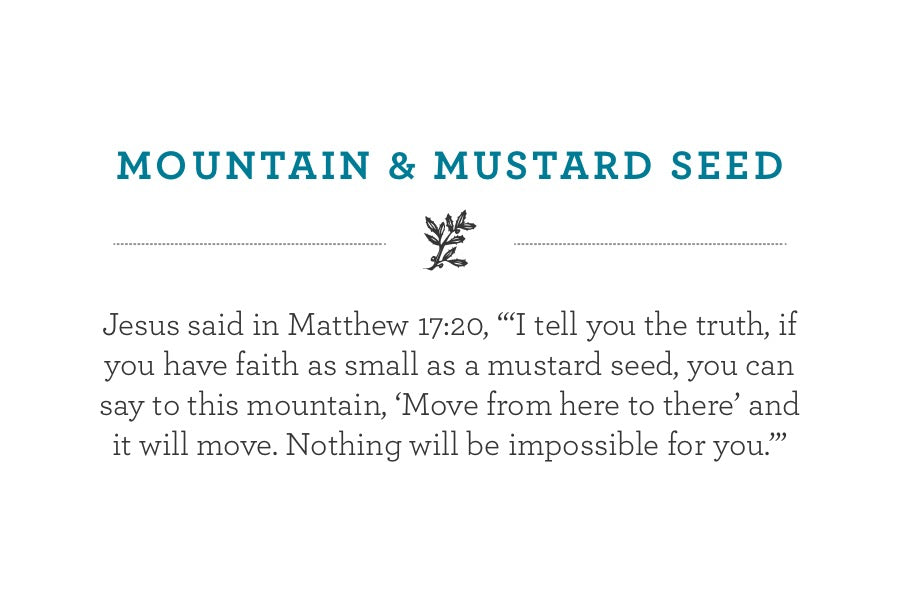 "Jesus said in Matthew 17:20, ""'I tell you the truth, if you have faith as small as a mustard seed, you can say to this mountain, 'Move from here to there' and it will move. Nothing will be impossible for you.'"""