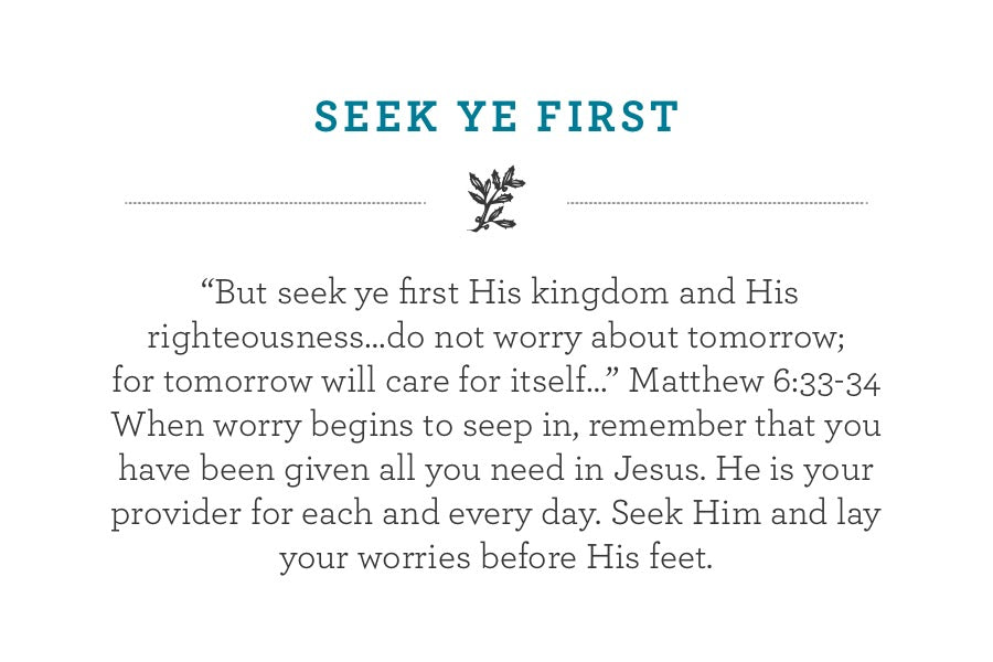 """But seek ye first His kingdom and His righteousness…do not worry about tomorrow;  for tomorrow will care for itself…"" Matthew 6:33-34 When worry begins to seep in, remember that you have been given all you need in Jesus. He is your provider for each and every day. Seek Him and lay your worries before His feet."