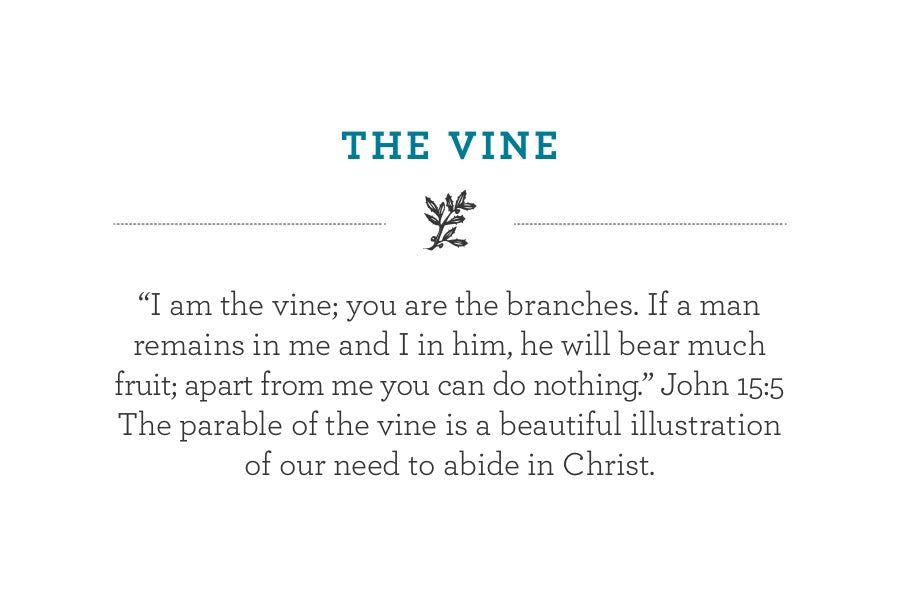 """I am the vine; you are the branches. If a man remains in me and I in him, he will bear much fruit; apart from me you can do nothing."" John 15:5 The parable of the vine is a beautiful illustration of our need to abide in Christ."
