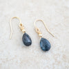 Holly Lane Christian Jewelry - Deep Waters Earrings