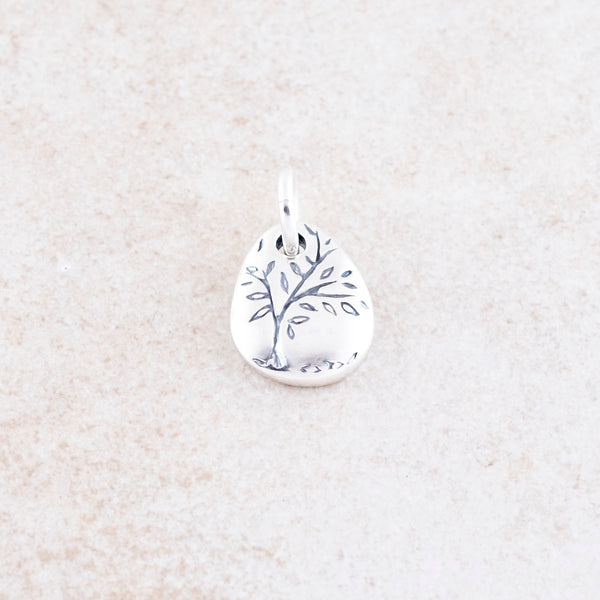 Holly Lane Christian Jewelry - God Around Us Charm