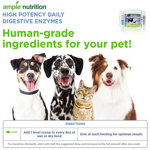 Daily Digestive Enzymes For Pets