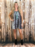 Lupe Velvet Studded Dress in Silver