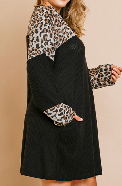 Wild Side Leopard Dress in Black - Plus
