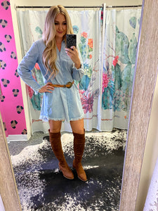 Tillis Denim Button Down Dress