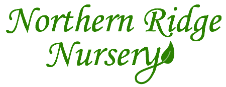 Northern Ridge Nursery