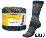 Regia Colour Line Sock Yarn
