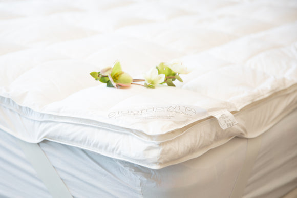Eiderdown White Goose Down Mattress Topper
