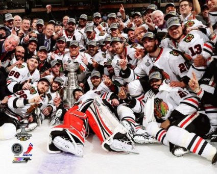 Chicago Blackhawks 16 X 20 Picture 2013 Stanley Cup Champions - Dino's Sports Fan Shop
