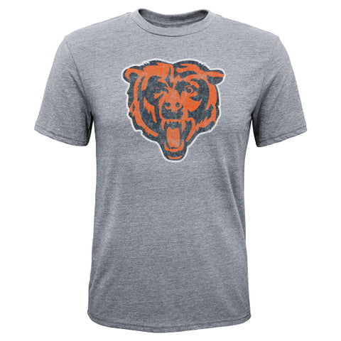 Chicago Bears NFL Gray Logo Youth Shirt