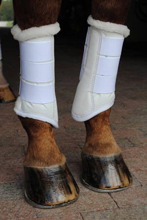 Dressage sport boots 2 - Leveza