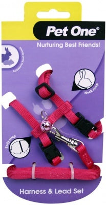LEASH & HARNESS FOR SMALL ANIMALS - PINK