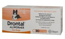 DRONTAL DOG UP TO 10KG SINGLES