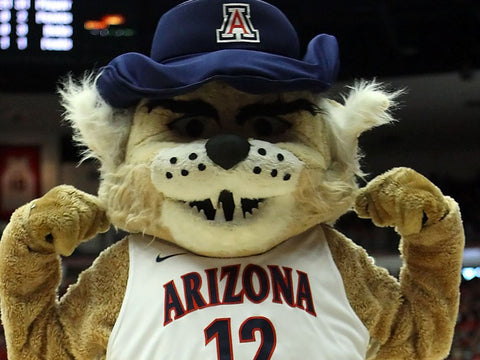 Wilbur Wildcat - Arizona Wildcats Hats at Cowbucker.com