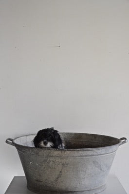 LARGE VINTAGE INDUSTRIAL GALVANISED GARDEN HERB PLANTER TUB
