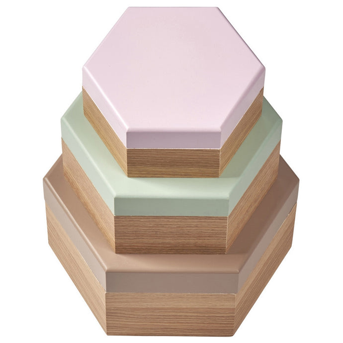 Transomnia Anstrom Set of 3 Hexagonal Wood Boxes