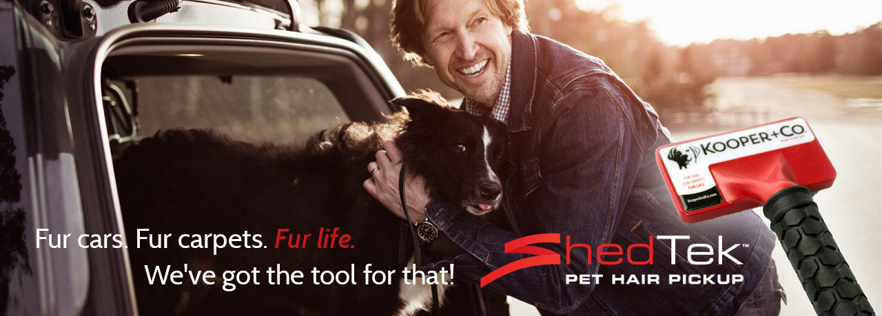 pet hair remover for cars and carpet