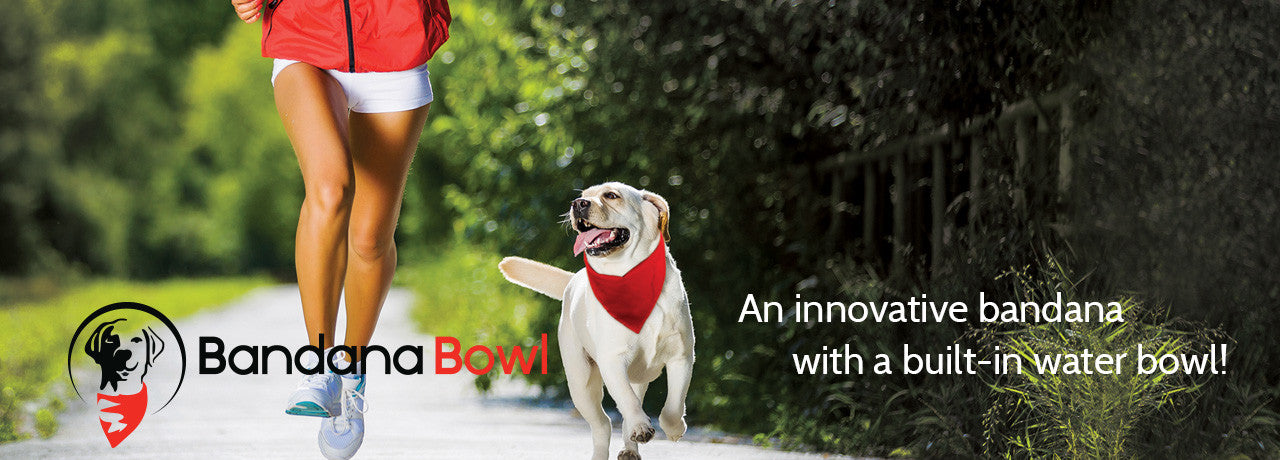 water bowl bandana for dogs