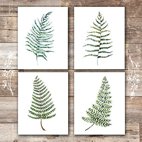 Fern Wall Art - Botanical Prints - (Set of 4) - Unframed - 8x10s - Dream Big Printables