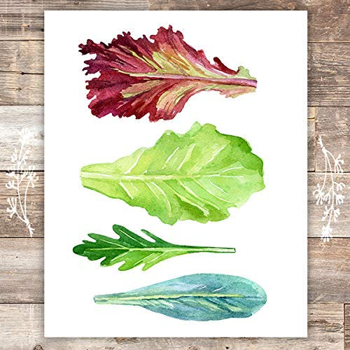 Lettuce Leaf Art Print - Unframed - 8x10 - Dream Big Printables