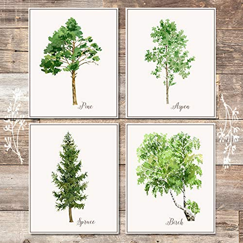 Trees Wall Art Prints (Set of 4) - Unframed - 8x10s | Botanical Prints - Dream Big Printables