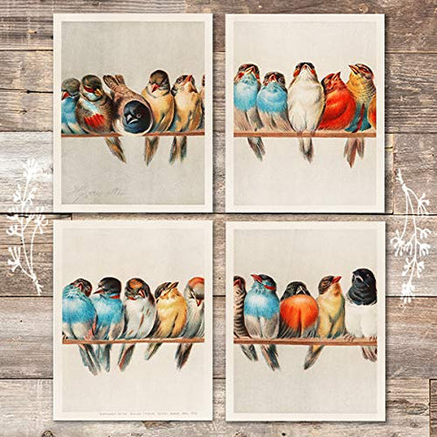 A Perch Of Birds Art Prints (Set of 4) - Unframed - 8x10s - Dream Big Printables