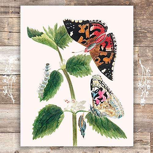 Vintage Butterfly and Caterpillar Wall Art Print - Unframed - 8x10 | Botanical Wall Decor - Dream Big Printables