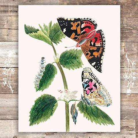 Vintage Butterfly and Caterpillar Wall Art Print - Unframed - 8x10 | Botanical Wall Decor
