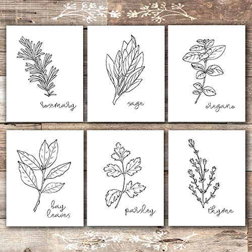 Kitchen Herbs Black & White Art Prints - Botanical Prints - (Set of 6) - 8x10s - Dream Big Printables